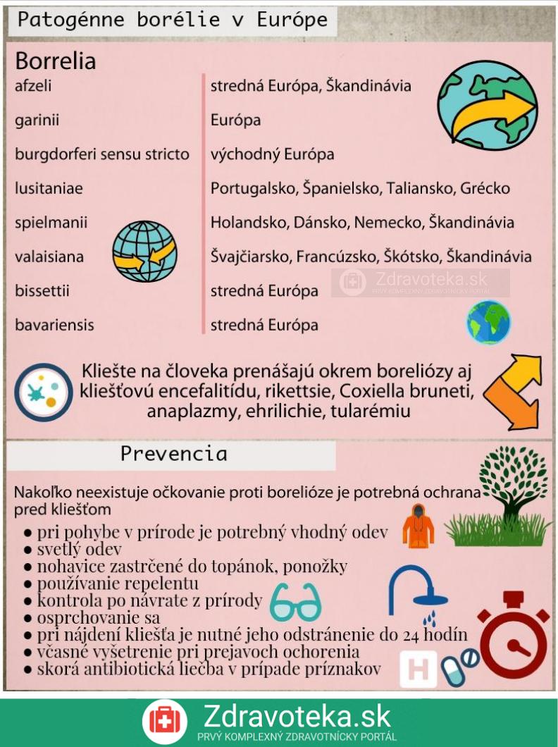 Infografika uvádza patogénne borélie v Európe a spôsob ako sa chrániť pred zaklieštením, teda prevenciu