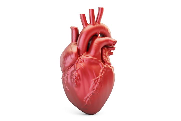 Kardiomyopatia: Čo je to, ako sa prejavuje? Príčiny v detstve i dospelosti