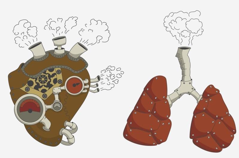 Pľúcna hypertenzia: Čo je to a prečo vzniká? + Príznaky a liečba