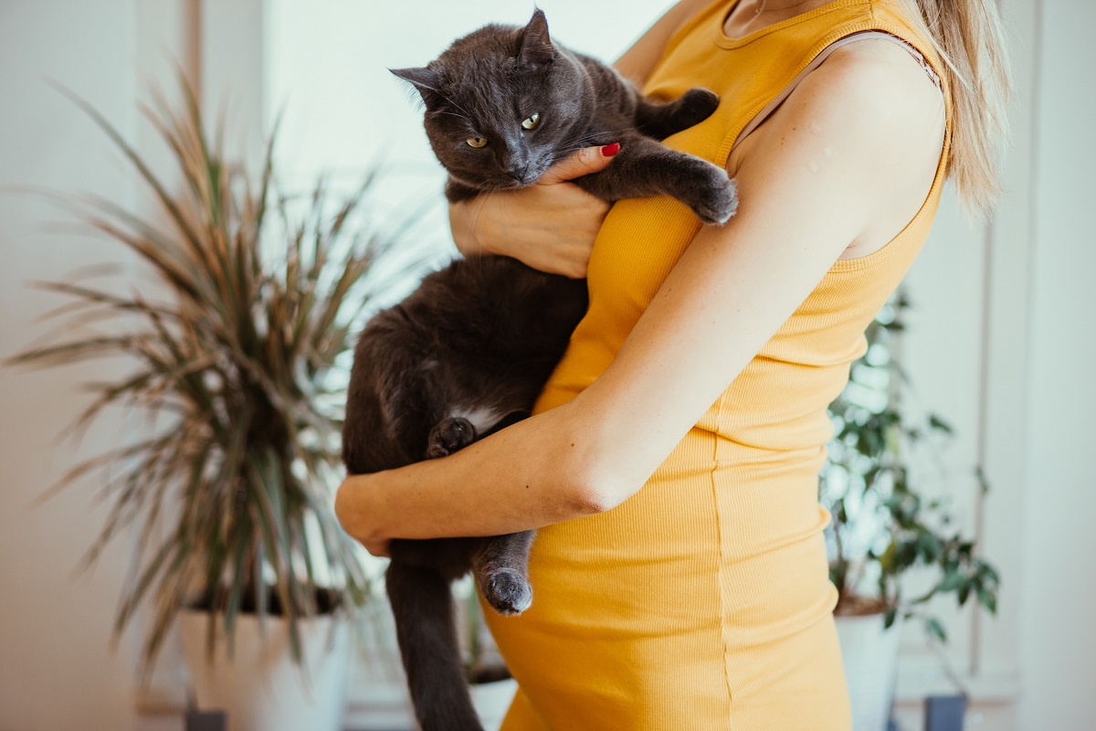 Tehotná žena a mačka, Zdroj: Getty Images