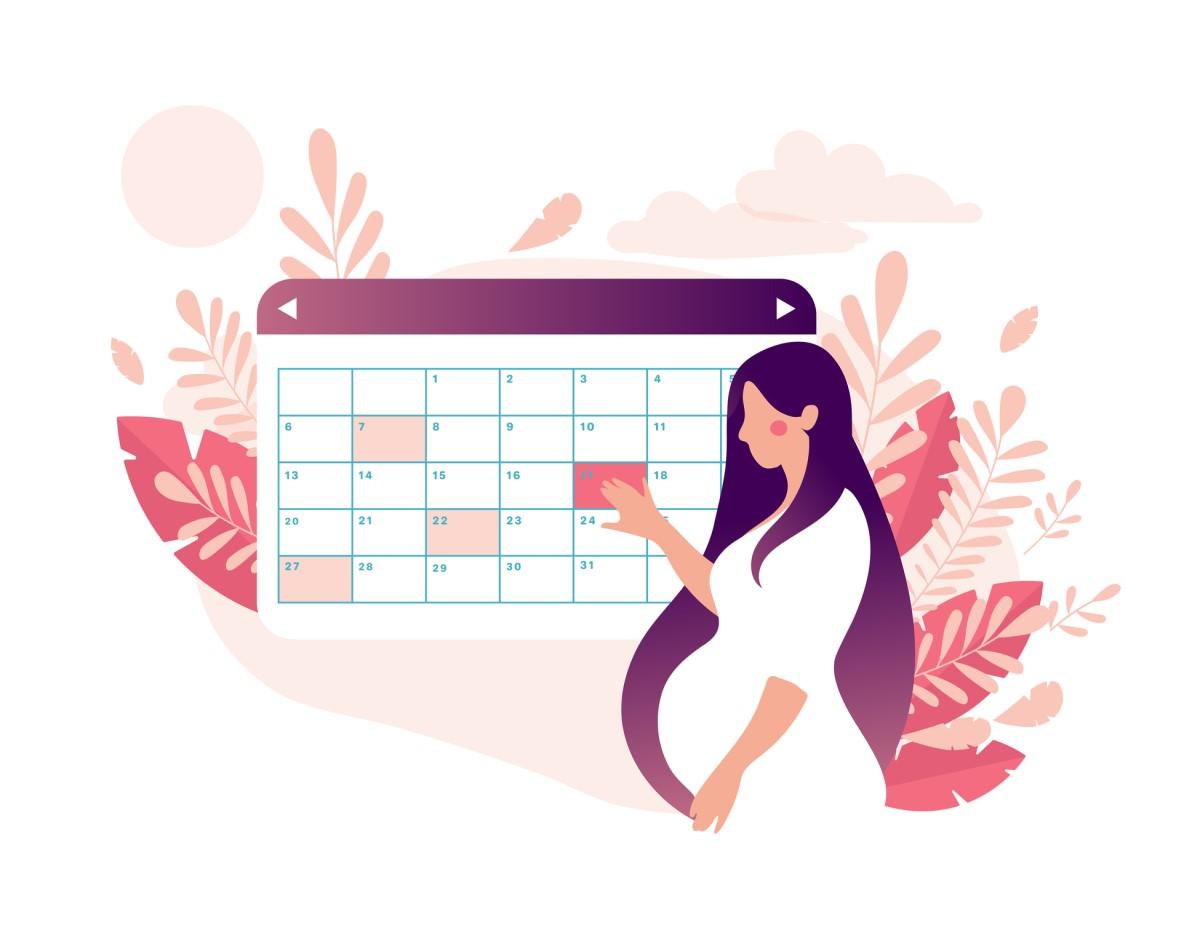 Ako dlho trvá tehotenstvo? Koľko dní, týždňov a mesiacov?