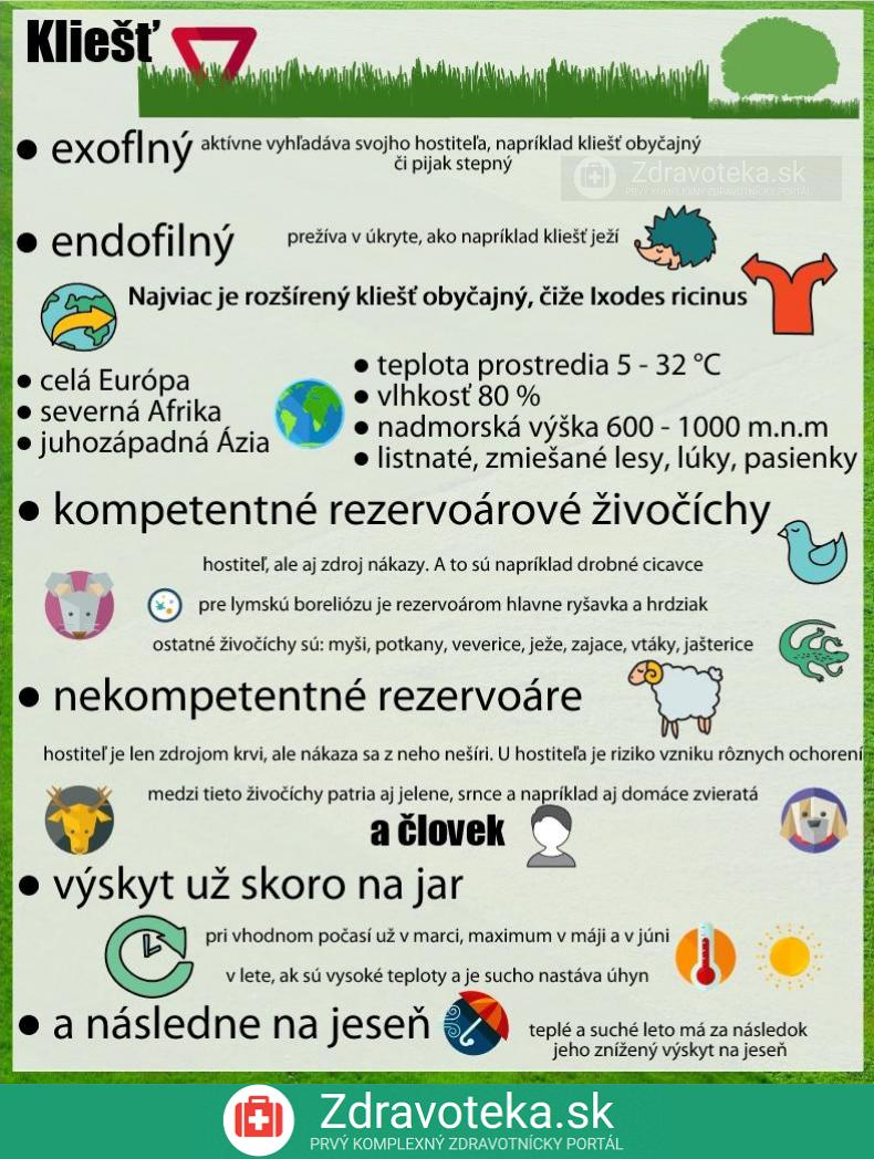 Infografika o kliešťoch, exofilný a endofilný druh, kde sa nachádzajú, aké podmienky sú vhodné a kto je ich hostiteľom a prenášačom ochorení, sezónny výskyt