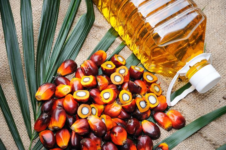 Palmový olej a zdravie - prečo by sme ho nemali používať