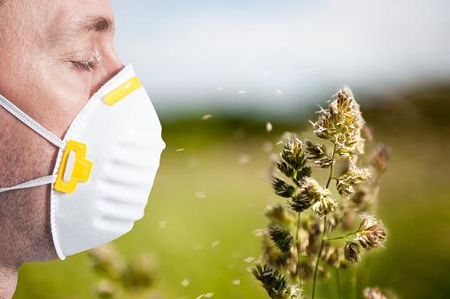 Peľová sezóna útočí: Alergia na peľ, prejavy, liečba? Peľový kalendár