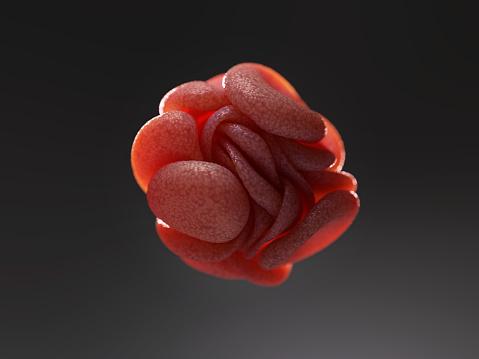 Trombóza nie je ochorením starých ľudí. Ohrozuje aj mladých!